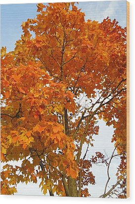 The Colors Brought To Autumn Wood Print by Guy Ricketts
