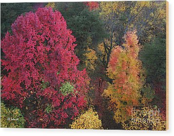 The Colors Of Fall Wood Print by E B Schmidt