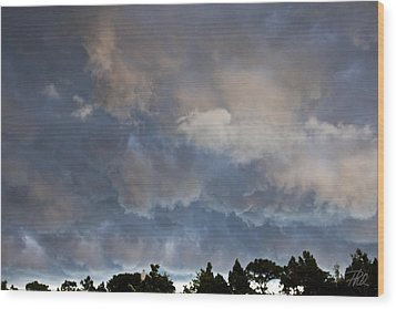 The Coming Storm Wood Print by Phil Mancuso