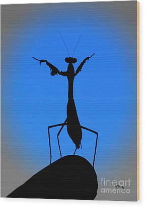 The Conductor Wood Print