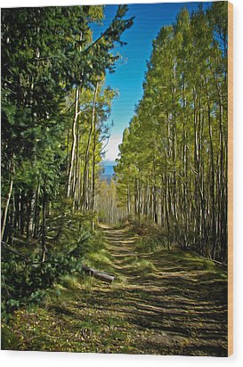Wood Print featuring the painting The Cool Path Through Arizona Aspens by John Haldane