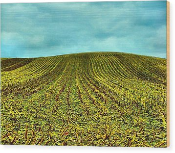 The Corn Rows Wood Print by Julie Dant