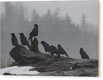 The Corvidae Family  Wood Print by Cathie Douglas