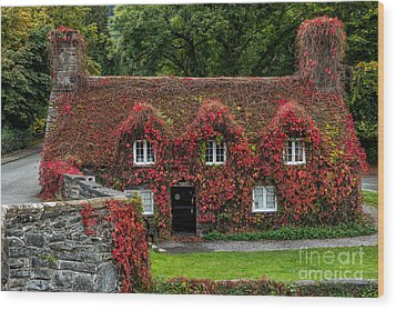 The Cottage Wood Print by Adrian Evans