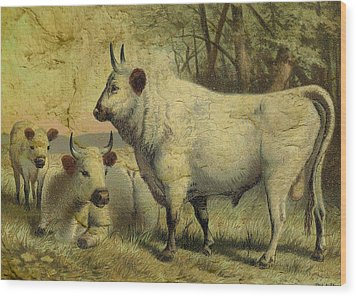 The Cows Came Home Wood Print by Sarah Vernon