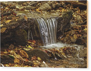 Wood Print featuring the photograph The Creek by Debra Crank