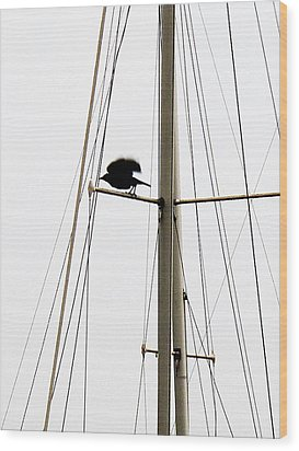 Wood Print featuring the photograph The Crow Leaving The Absent Crows Nest by John King