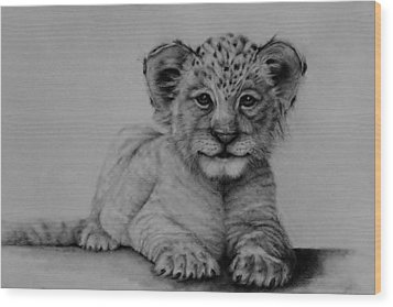 The Cub Wood Print by Jean Cormier