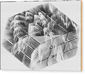 The Cube - Abstract - Ile De La Reunion - Reunion Island - Indian Ocean Wood Print by Francoise Leandre
