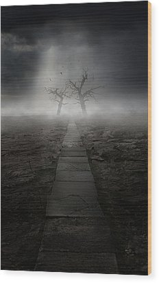 The Dark Land Wood Print by Jaroslaw Blaminsky