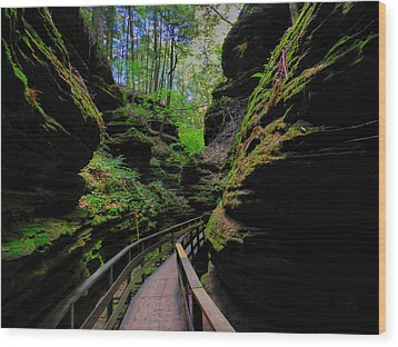 The Dells 044 Wood Print by Lance Vaughn