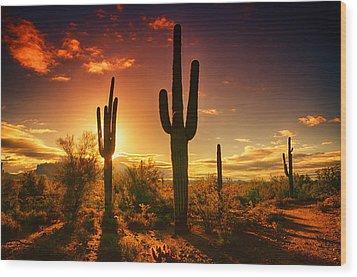 The Desert Awakens  Wood Print by Saija  Lehtonen