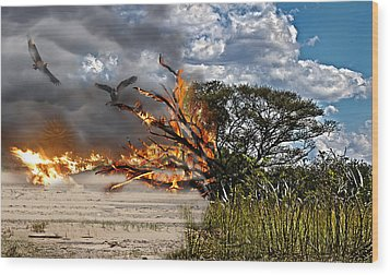 The Destruction Of Our Land Wood Print by Ronel Broderick