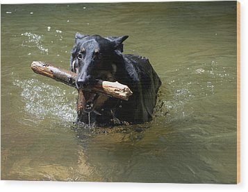 The Dog Days Of Summer Wood Print by Bill Cannon