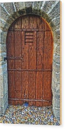 The Door - Vintage Art By Sharon Cummings Wood Print by Sharon Cummings
