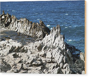 The Dragons Teeth I Wood Print by Patricia Griffin Brett