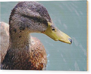 The Duck Wood Print by Milena Ilieva