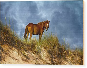 The Dune King Wood Print by Betsy Knapp