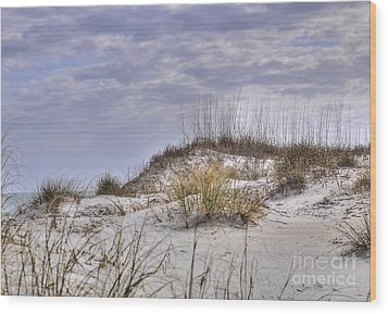 Wood Print featuring the photograph The Dunes At Huntington Beach State Park by Kathy Baccari