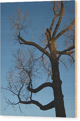 The Dusk Kept Dropping Wood Print by Guy Ricketts