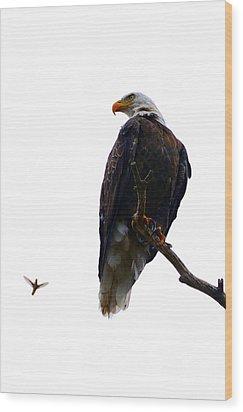 The Eagle And The Hummingbird Wood Print