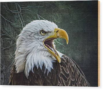 Wood Print featuring the photograph The Eagle's Cry by Brian Tarr