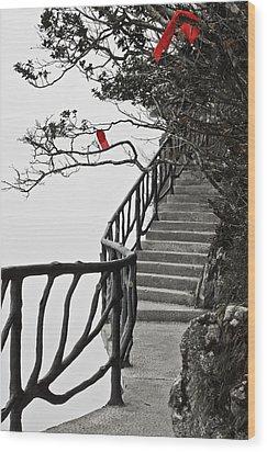 The Edge Zhangjiajie China Wood Print by Sally Ross