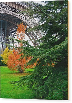 The Eiffel In Fall Wood Print