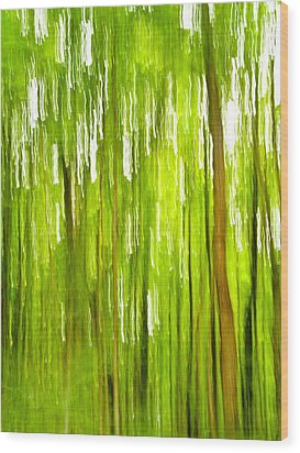 The Emerald Forest Wood Print by Bill Gallagher