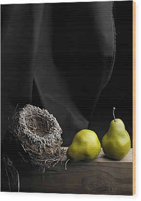 The Empty Nest Wood Print by Krasimir Tolev