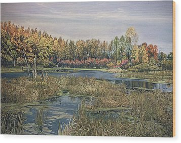 The Endangered Wetlands No. 4 Wood Print by James Welch