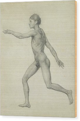 The Entire Human Figure From The Left Lateral View Wood Print by George Stubbs