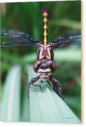 Wood Print featuring the photograph The Face Of A Dragonfly 01 by George Bostian