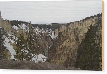 The Falls At Yellowstone Park Wood Print
