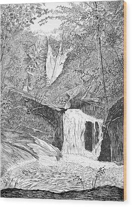 The Falls II Wood Print