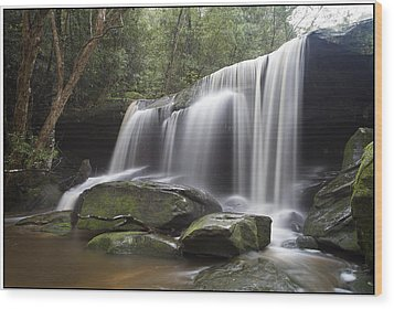The Falls Wood Print by Steve Caldwell