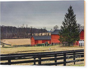 Wood Print featuring the photograph The Farm by Rafael Quirindongo