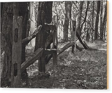 Wood Print featuring the photograph The Fence by JRP Photography