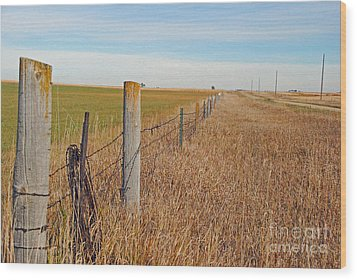 The Fence Row Wood Print by Mary Carol Story