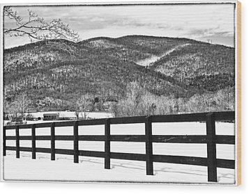 The Fenceline B W Wood Print