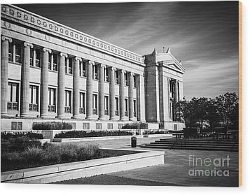 The Field Museum In Chicago In Black And White Wood Print by Paul Velgos