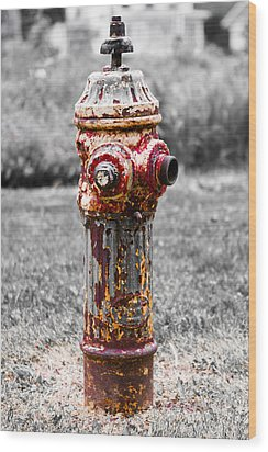 Wood Print featuring the photograph The Fire Hydrant by Ricky L Jones
