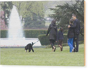 The First Family And Bo Wood Print by JP Tripp