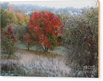 Wood Print featuring the photograph The First Frost by Jay Nodianos