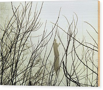Wood Print featuring the photograph The Fisherman by Robyn King