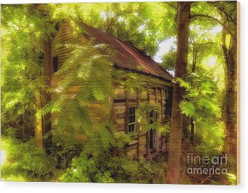The Fixer-upper Wood Print by Lois Bryan