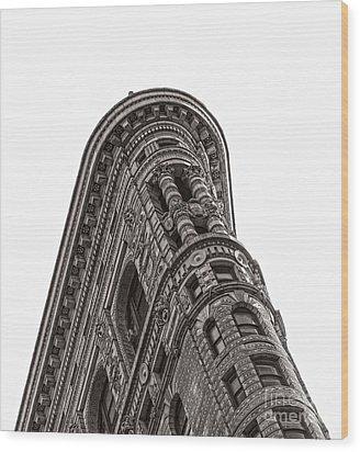 The Flatiron Wood Print by Sebastian Mathews Szewczyk