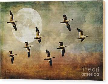 The Flight Of The Snow Geese Wood Print by Lois Bryan