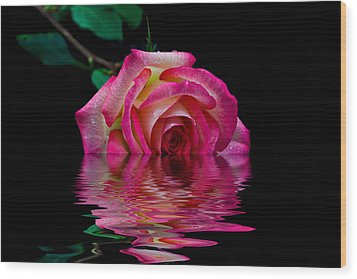 The Floating Rose Wood Print