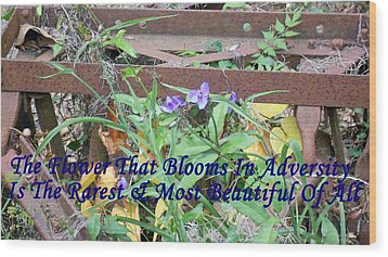 The Flower That Blooms In Adversity  Wood Print